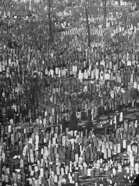 Masses of Tombstones in Cemetery in Queens by Andreas Feininger