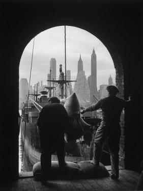 Men Unloading Coffee at Brooklyn Dock. View of Downtown Manhattan in Background by Andreas Feininger