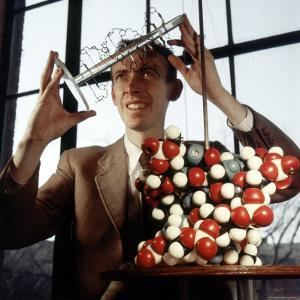 Pioneer Geneticist Biologist James Watson with Molecular Model of DNA by Andreas Feininger