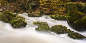 Germany, Rhineland-Palatinate, Eifel, Rapids of the PrŸm with Irrel by Andreas Keil