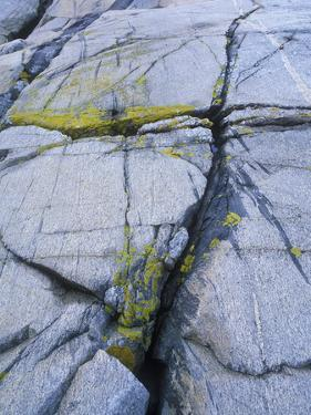 Norway, Telemark, the North Sea, Skagerak, Portšr, Lichen-Covered Rocks by Andreas Keil