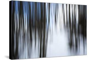 Forest Formation by Andreas Stridsberg