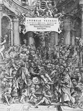 Title Page of De Humani Corporis Fabrica (Latin for on Fabric of Human Body) by Andreas Vesalius