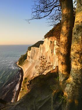 Denmark, Island M¿n, the Chalk Rocks of M¿ns Klint in the Morning Light by Andreas Vitting