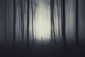 Spooky Forest Scene with Ghost on a Path by andreiuc88