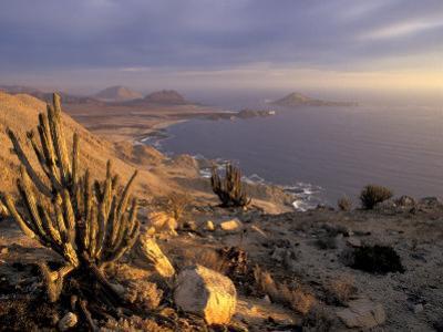 Desert Coast and Pacific Ocean, Atacama Desert, Pan de Azucar National Park,Chile