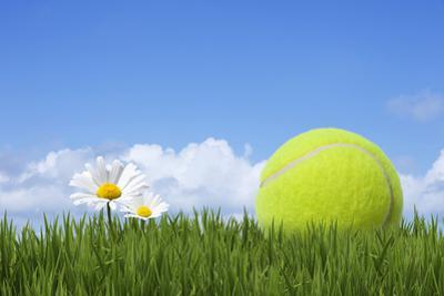 Tennis Ball by Andrew Dernie