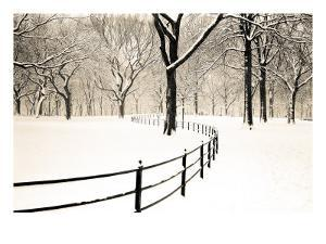 Central Park Snow by Andrew Geiger
