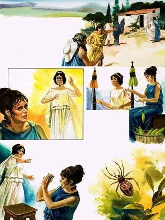 Arachne and Athene by Andrew Howat