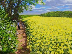 Boy and His Dog, Radbourne, Derby by Andrew Macara