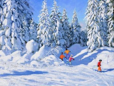 Bright Morning and Snow Covered Trees, Morzine by Andrew Macara