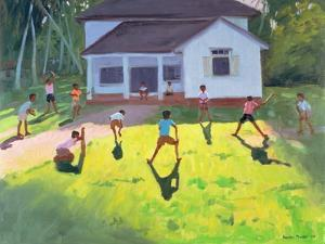 Cricket, Sri Lanka, 1998 by Andrew Macara