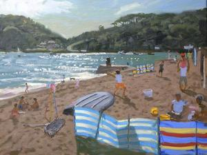 Cricket, Teignmouth by Andrew Macara