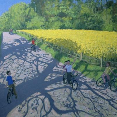 Cyclists and Yellow Field, Kedleston, Derby