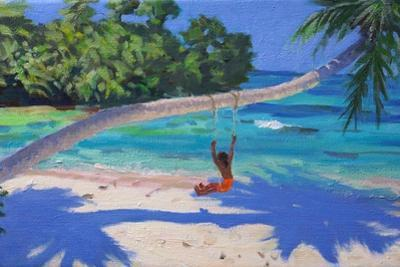 Girl on a Swing, Seychelles, 2015 by Andrew Macara