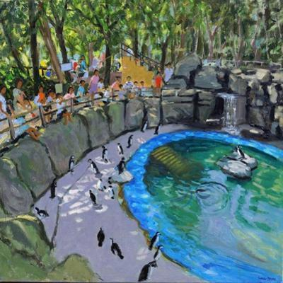 Penguin Pool, Madrid Zoo, 2015 by Andrew Macara