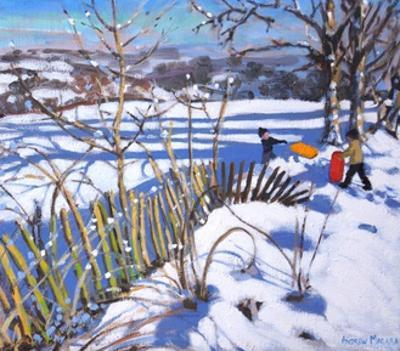 Red and Orange Sledges, Derbyshire, 2017 by Andrew Macara