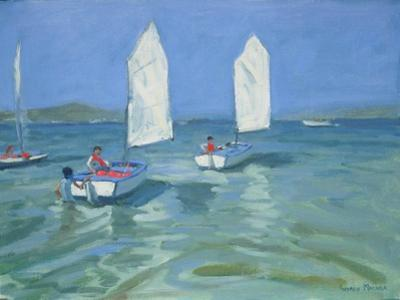 Sailing School, 2009 by Andrew Macara