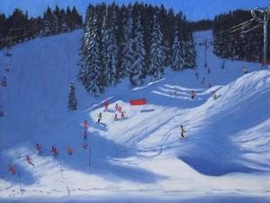 Ski School, Morzine, 2014 by Andrew Macara