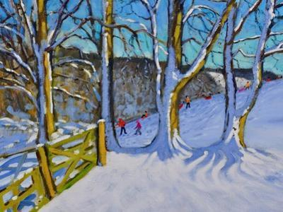 Sledging,Dam Lane,Derbyshire,2017 by Andrew Macara