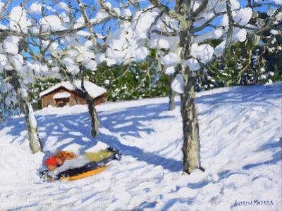 Sledging in the Orchard, Morzine by Andrew Macara