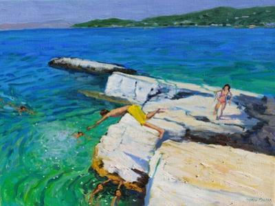 The Diver, Plates Rock, Skiathos, Greece, 2015 by Andrew Macara