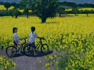 Yellow Field, Kedleston, Derby by Andrew Macara