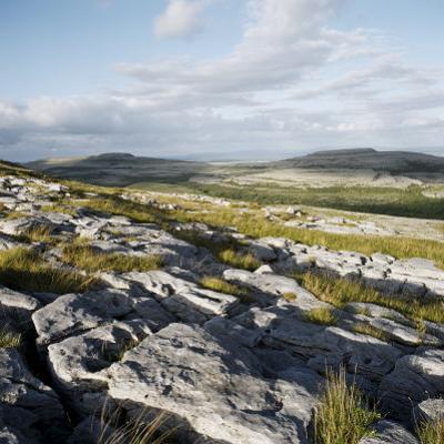 Burren, County Clare, Munster, Republic of Ireland, Europe