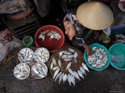 Fresh Fish at the City Market, Da Nang, Vietnam, Indochina, Southeast Asia