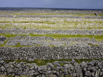Stone Walls on Inis Mor (Inishmore), Aran Islands, Republic of Ireland