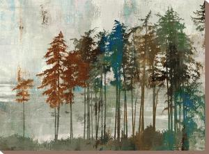 Aspen by Andrew Michaels