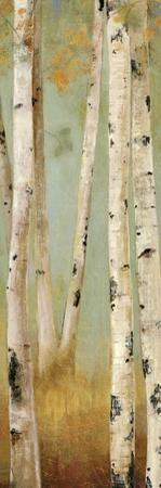 Eco Panel II by Andrew Michaels