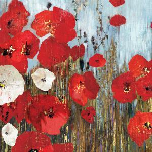 Passion Poppies I by Andrew Michaels
