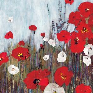 Passion Poppies II by Andrew Michaels