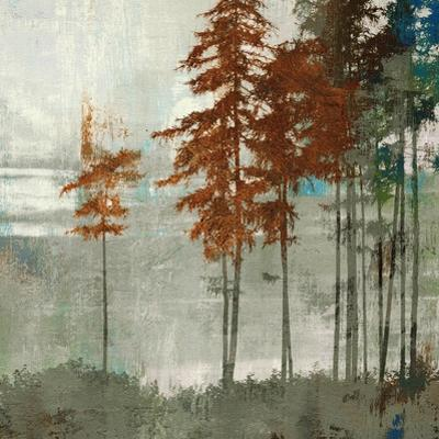 Spruce Woods II by Andrew Michaels