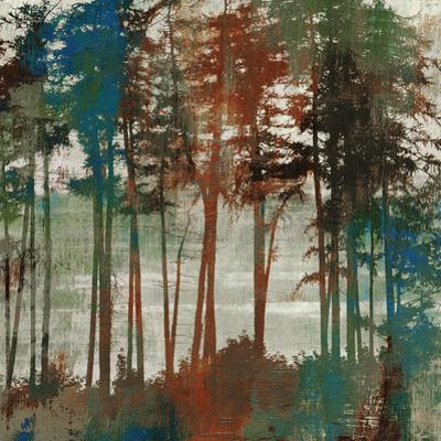 Spruce Woods by Andrew Michaels