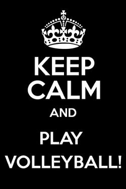 Keep Calm and Play Volleyball by Andrew S Hunt