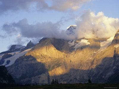 Blumlisalphorn (3664M) in Evening Light, Bernese Oberland, Swiss Alps, Switzerland, Europe