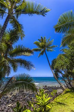 Tropical Coastline of Princeville, Hi by Andrew Shoemaker