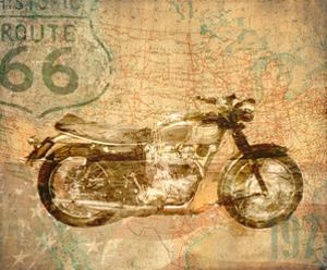 American Rider by Andrew Sullivan