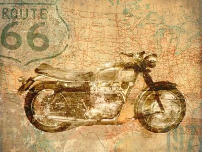 American Rider