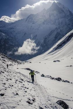 A Hiker Ascends the Modi Khola Valley to Reach Annapurna Base Camp, 4130M by Andrew Taylor