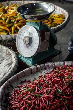 Chillies, Pak Khlong Market, Bangkok, Thailand, Southeast Asia, Asia by Andrew Taylor