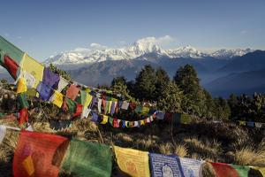 The View from Poon Hill, 3210M by Andrew Taylor