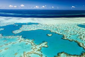 Great Barrier Reef by Andrew Watson