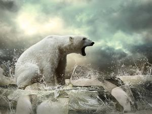 White Polar Bear Hunter on the Ice in Water Drops. by Andrey Yurlov