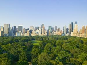 View of Central Park Southwest from Hot Air Balloon by Andria Patino