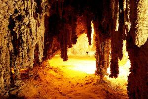 Carlsbad Caverns National Park in USA by Andrushko Galyna