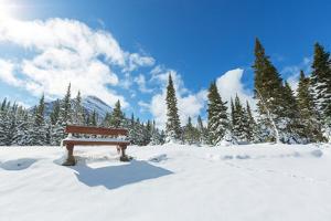 Glacier National Park, Montana.Winter. by Andrushko Galyna