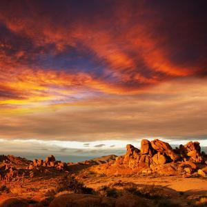 Gobi Desert by Andrushko Galyna